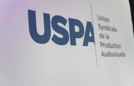 Élections des membres du  Conseil Syndical de l'USPA pour la période 2018/2019